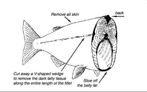 Clean Fish
