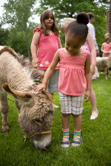 Girl and donkey at parish picnic.