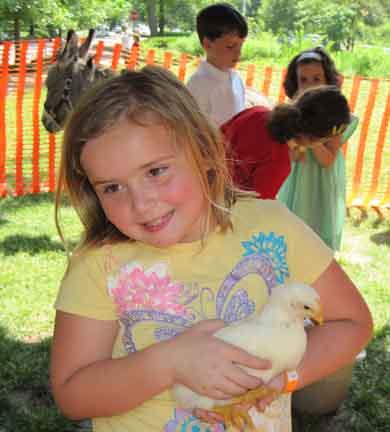 pets at the picnic