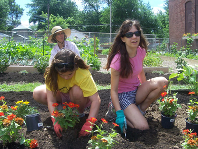 YM garden project