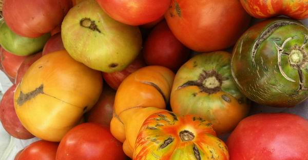 Vine ripened heirlooms