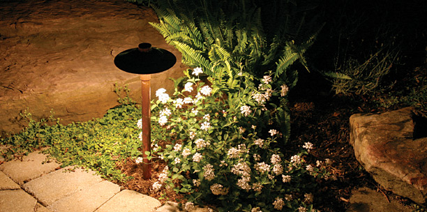 Landscaping News - Pizza Ovens, Snails, Man Plants... - Constant ...