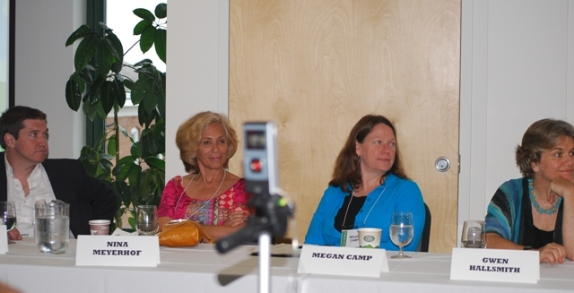 panel_ppi2011