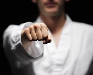karate-fist.jpg