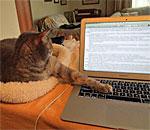 Sophie the Super Muse helps bestselling author Kathleen Ernst edit her manuscript.