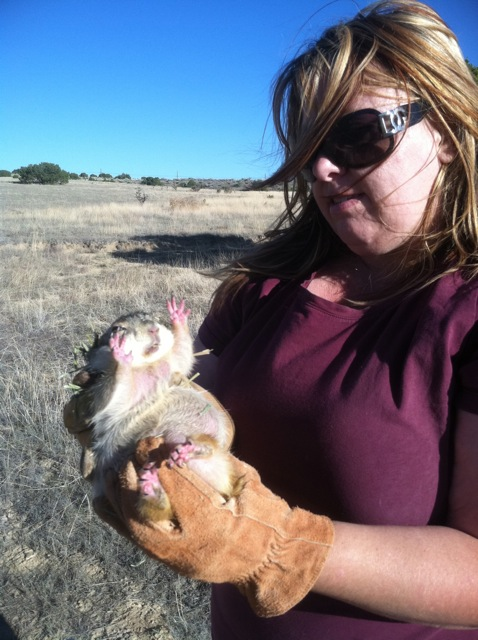 Sandy Holding Prairie Dog
