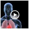 Body Basics Video