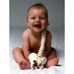 baby spine
