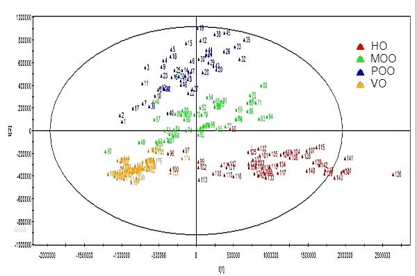 Oils Classification