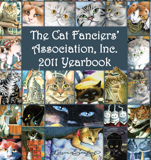 2011 Yrbook Cover