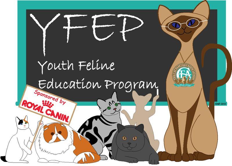 YFEP Professor