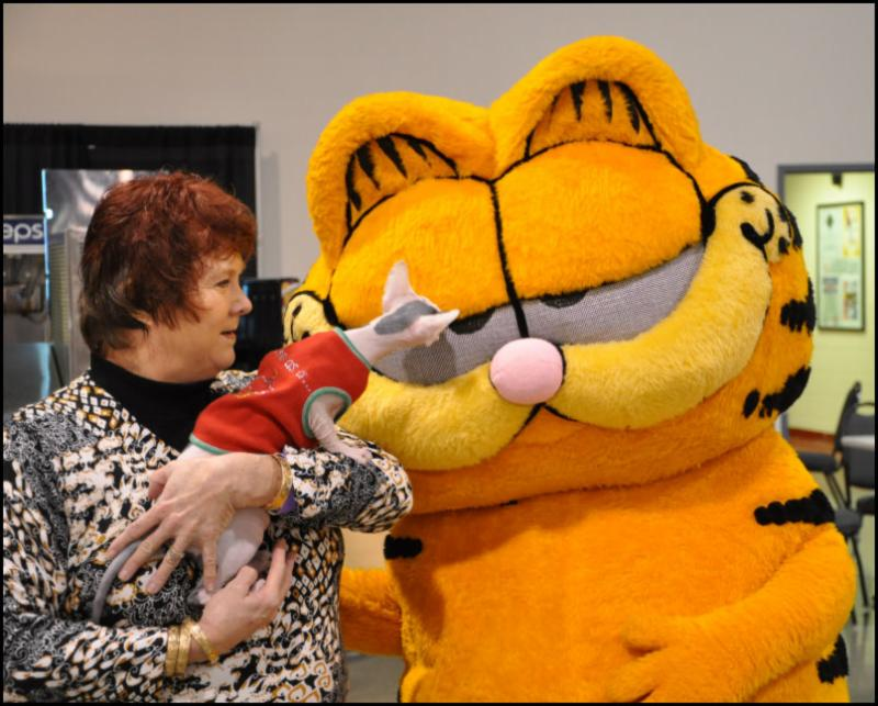 DeeDee Cantley's Sphynx checks out Garfield!