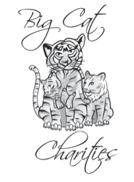 2nd annual big cat charities event