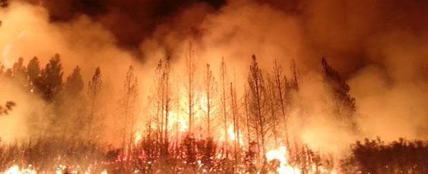 Rim Fire at Night