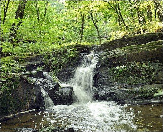 Dayspring Creek