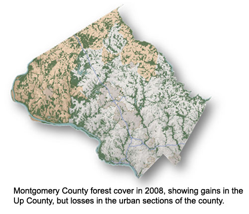 County Forest cover 2008