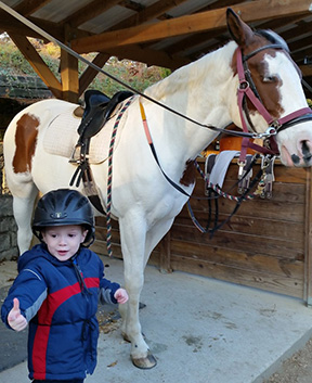 boy and horse at Chastain Horse Park