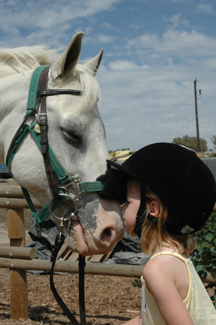 little girl kissing horse