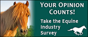 horse survey ad