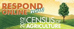 USDA Census button