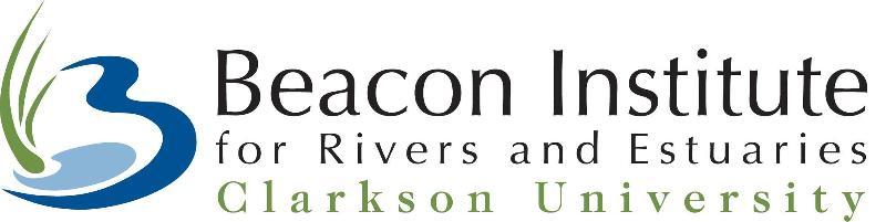 Beacon Institute