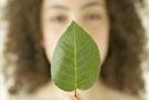 Green Beauty Tip