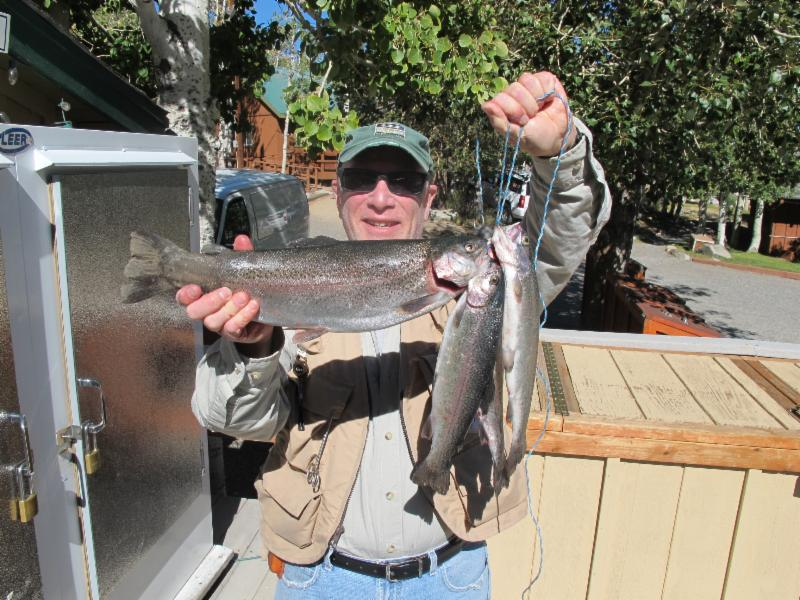 convict lake resort fishing report september 28 2013