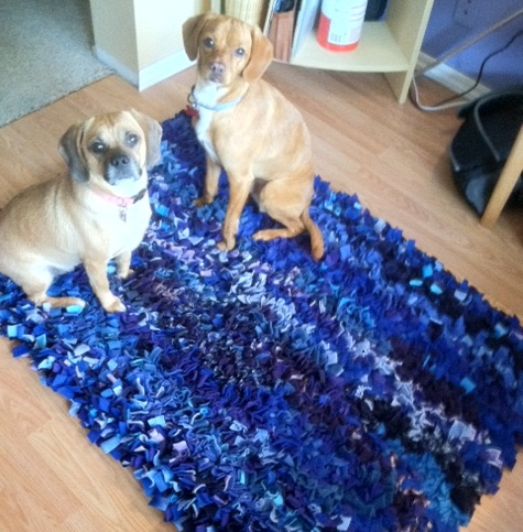 Sharon Anderson Blue Shag Rug w dogs