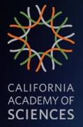 CalAcademy logo