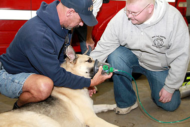 Press~Journal photo by Debra Schell~ Highspire Fire Chief Bob Condran, left, and Samuel Rittner III demonstrate the use of a pet oxygen mask on a dog. The mask is one of three donated to the fire company by Rittner's mother, Marylou, after a fire that resulted in the death of two dogs.