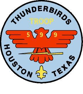 T599 Logo