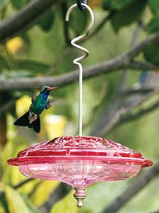 WBU Large Decorative Hummingbird Feeder