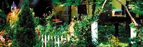 Backyard Habitat WBU header