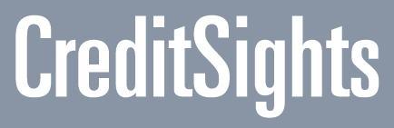 Credit Sights Logo
