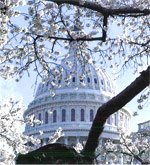 NAIFA Congressional Conference: April 8-9, 2013 in Washington, DC