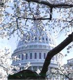 NAIFA Congressional Conference: April 8-9, 2013 in Washington, DC