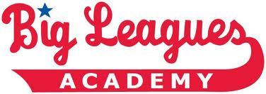 Big leagues Academy