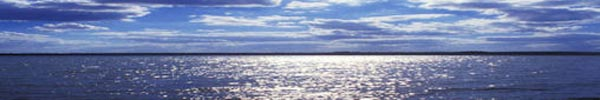 Lake Travis photo 2 from protectlaketravis.org website