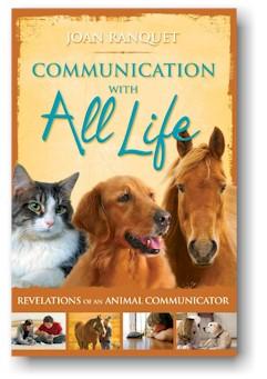 CommunicationWithLifeBook