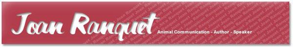 www.joanranquet.com