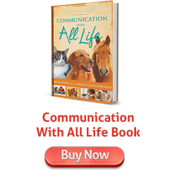 Communication With All Life Book