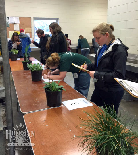National Collegiate Landscape Competition