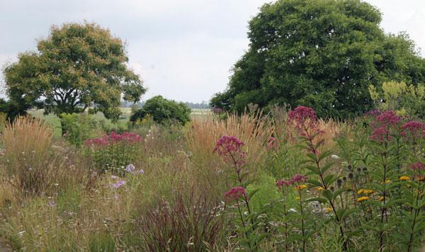 Piet Oudolf_s garden