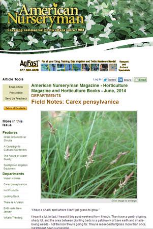Carex Field Notes in American Nurseryman