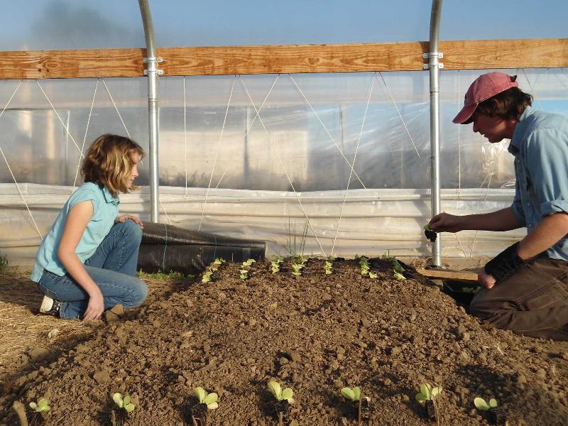 THV11: The Delta Garden Study — Yellville-Summit ...