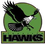 Updated BHS Logo