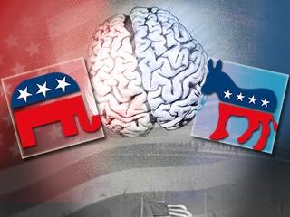 Politics & Brain