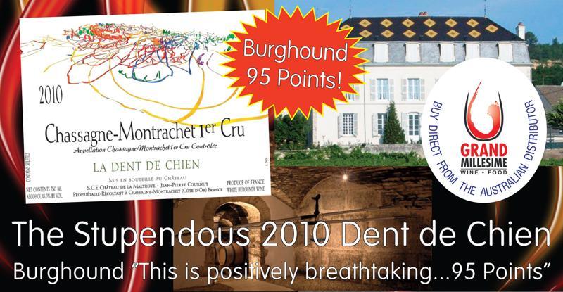 Maltroye Dent de Chien 2010 Header