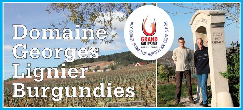Lignier Burgundies Header