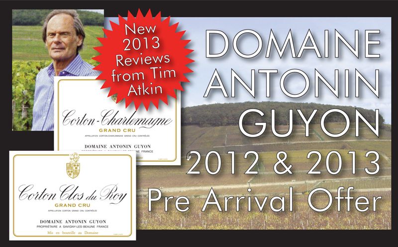Guyon 2012 2013 Review